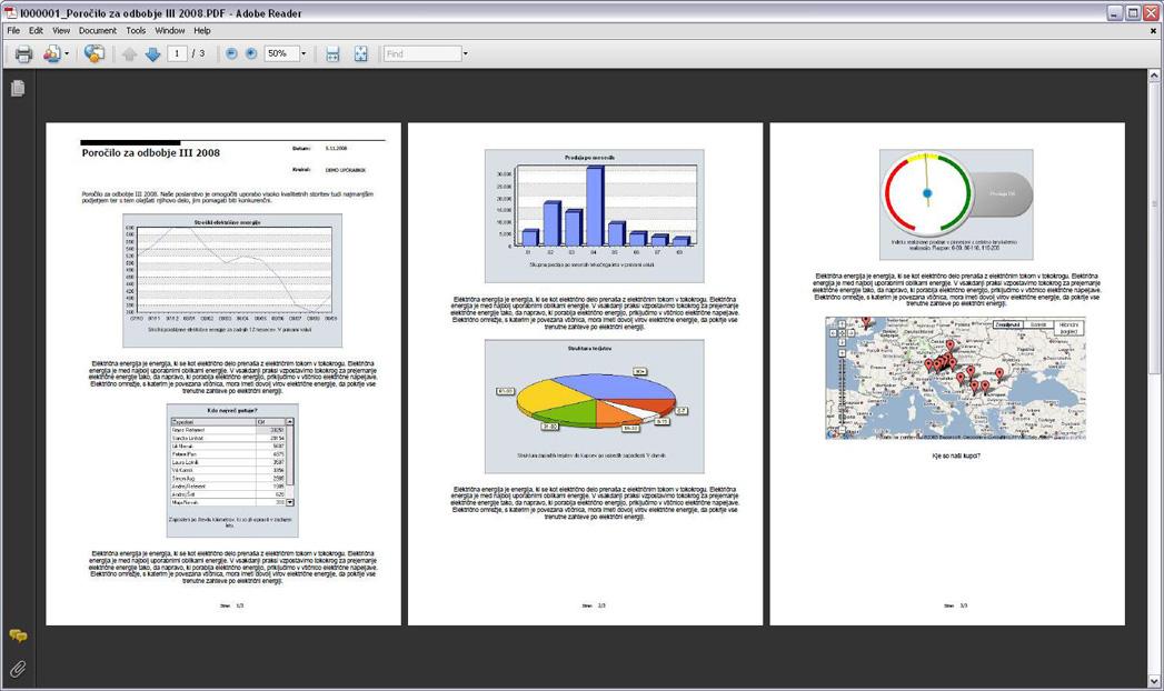 Poslovno poročilo v PDF